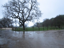 a very wet field station